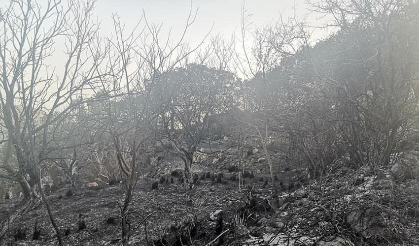 """Buscemi assediata dal fuoco, il sindaco La Pira: """"Chiederemo lo stato di calamità naturale"""""""