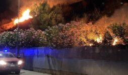 """Incendi nel Siracusano, Ternullo (Fi): """"Occorre lo stato di emergenza"""""""