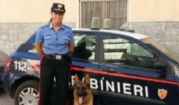Siracusa, morte Licia Gioia: assolto anche in appello il marito poliziotto