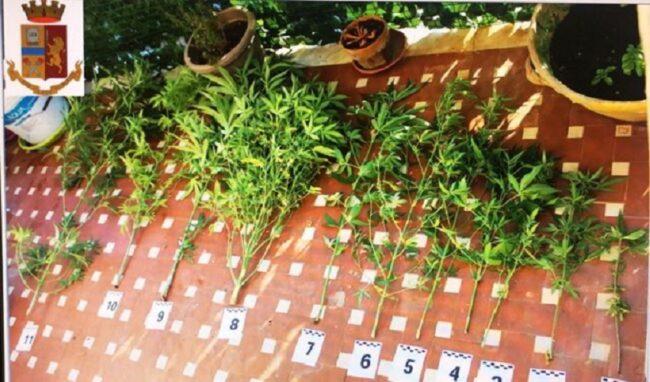 Coltivazione di canapa indiana sul terrazzo: a Lentini denunciati in 2