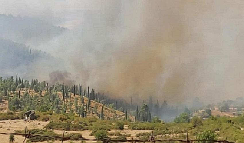Emergenza incendi, a Buccheri il sindaco cerca volontari per ronde diurne e notturne