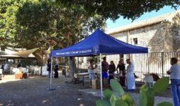 Parco archeologico di Siracusa, in 3 giorni rilasciati 378 Green pass