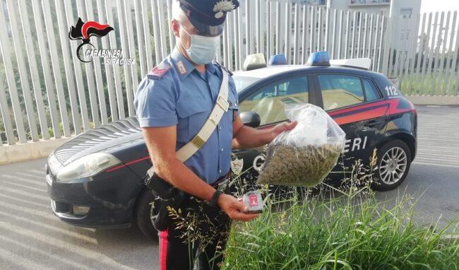Marijuana e hashish nascoste in giardino: arrestato 44enne ad Augusta