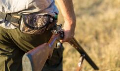 Sospesa la caccia in Sicilia, la decisione del Tar