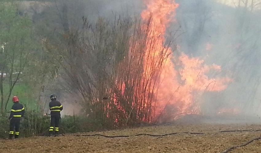 Incendio boschivo a Noto, denunciato un 57enne